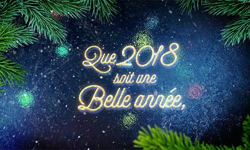 Bonne année 2018 !…
