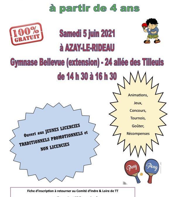 Plateau Ping Jeunes à Azay-le-Rideau